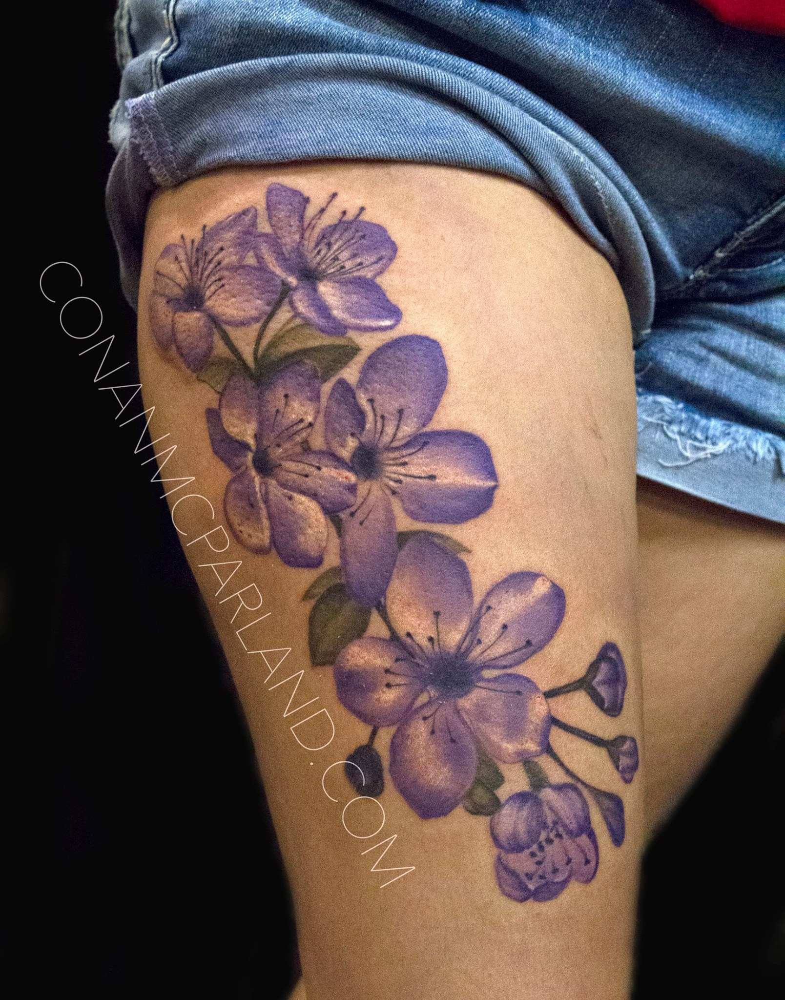 Charlotte nc custom tattoo shop canvas tattoo art gallery for Tattoo places in charlotte